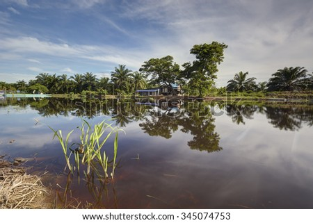 River reflection at rural paddy dam in Sekincan, Malaysia.