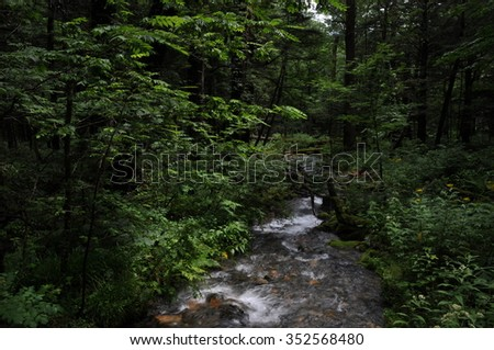 river stream in the forest of Kamikouch Japan - stock photo