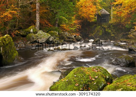 River through autumn colours at the Hermitage near Dunkeld in Scotland. - stock photo