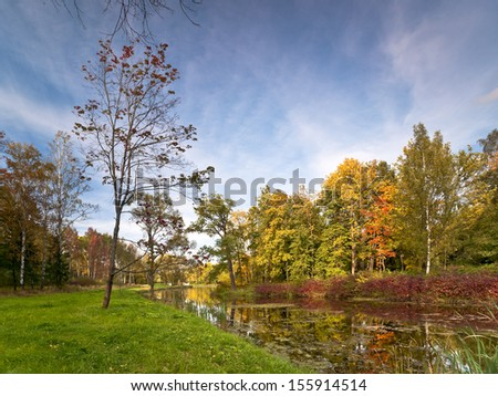 River with autumn colored trees and bushes