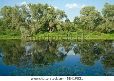 river with crystal surface in sunny summer day