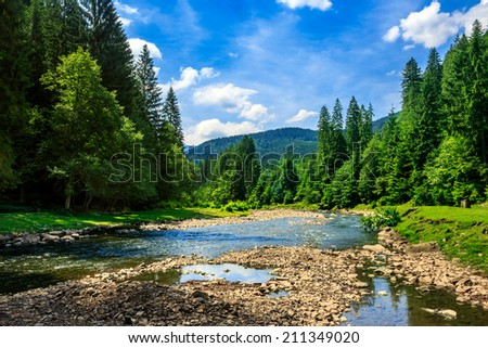 river with stones  in the forest near the mountain foot - stock photo