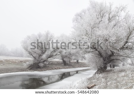 River Zagyva in Hungary in winter