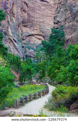 Riverside walk, Zion National Park, Utah - stock photo