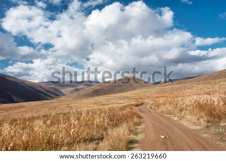 Road across wheat field in mountains. Shot in Lesotho. - stock photo