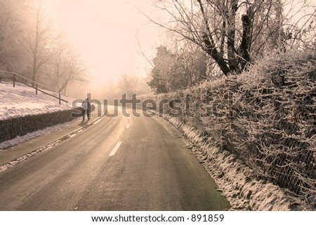 road along a frozen hedge, a single pedestrian visible.
