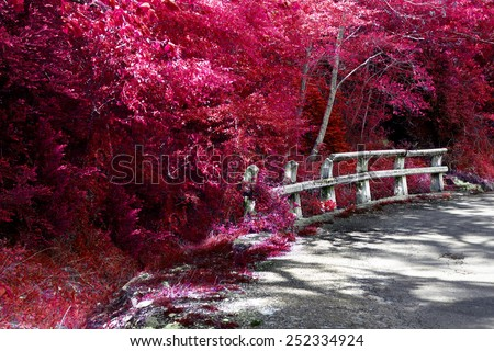 Road and autumn nature.Ditch and road fence - stock photo