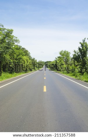 Road and green forest - stock photo