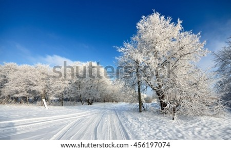 road and hoar-frost on trees in winter in Latvia