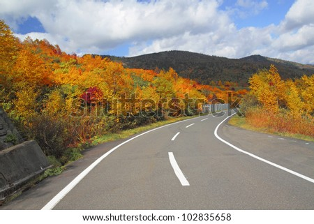road  and  some  colorful  leaves in Hachimantai - stock photo