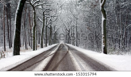 road and trees covered with snow on a cold winterday  - stock photo
