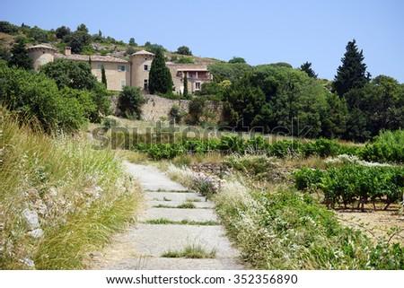 Road and vineyard near Arboras village,m France                                - stock photo