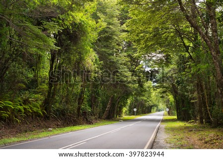 Road at Reserve  Chile - stock photo