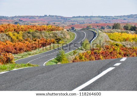 Road between vineyards, Basque Country (Spain) - stock photo