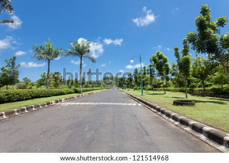 Road bordered with palm trees in Bali, Indonesia - stock photo