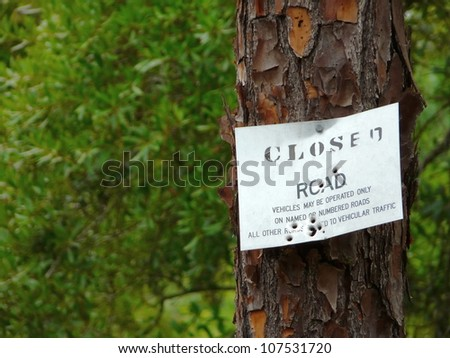 Road Closed sign with bullet holes nailed to a tree in the Withlacoochee State Forest of Florida.