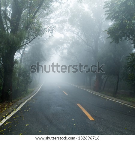 road covered in fog