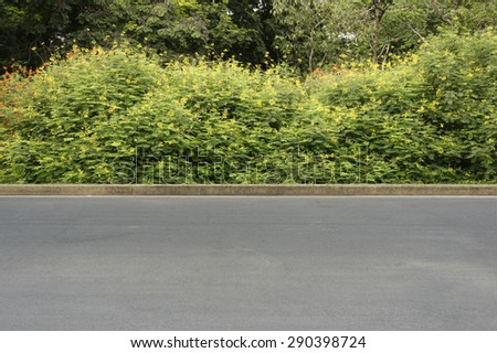 road garden background - stock photo