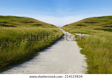 road & grassland - stock photo