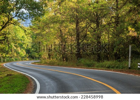 road green nature in many style in the north of thailand  - stock photo