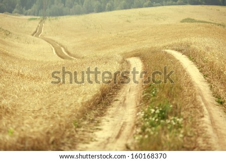 road in a field of wheat - stock photo
