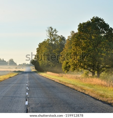 road in a rural area covered with morning fog