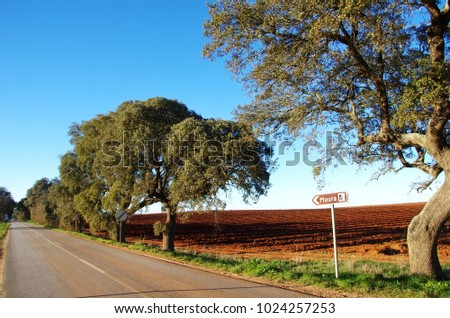 Road in Alentejo region, south of  Portugal