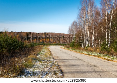 Road in autumn forest on  forest - stock photo
