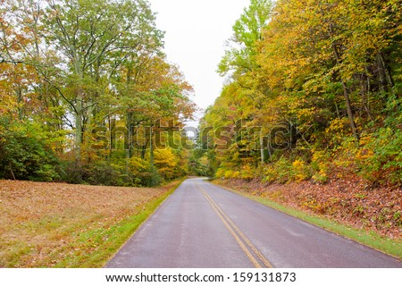 Road in autumn forest on overcast day. Blue Ridge Mountains, USA.