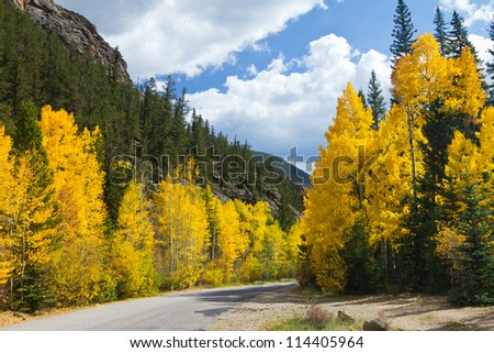 Road in Colorado Fall Aspen Forest - stock photo