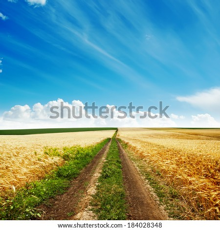 road in golden harvest to cloudy horizon - stock photo