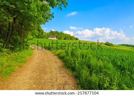 Road in green farming fields with house in background in countryside spring landscape, Burgenland, Austria - stock photo