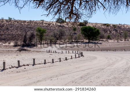 road in Kgalagadi transfontier park, game reserve in South Africa with blue sky - stock photo