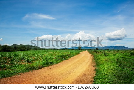 Road in mountains meadow