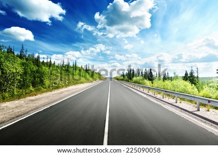 road in north forest - stock photo