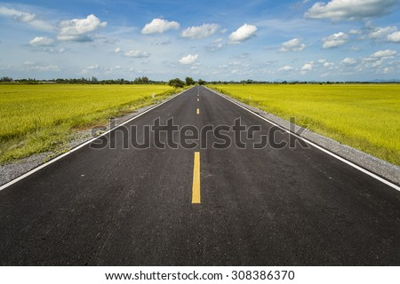 Road in rice field - stock photo