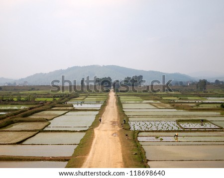 Road in rice paddy field, Citadel of the Ho Dynasty in Thanh Hoa, Vietnam - a UNESCO World Heritage Site