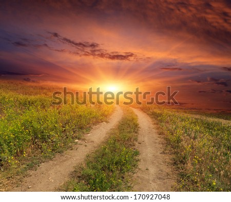 road in steppe on sunset background - stock photo