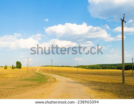 Road in summer