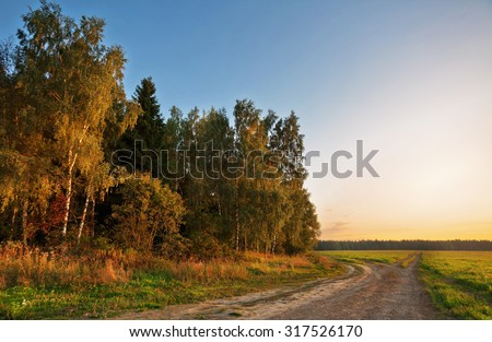 Road in summer sunset field