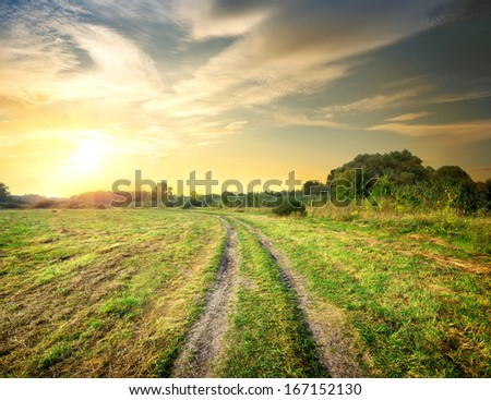 Road in the autumn field at sunset - stock photo