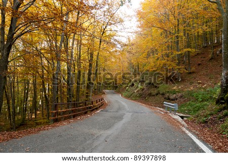 road in the autumn on Passo of the Bocco in genoa