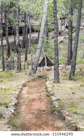 Road in the forest, surrounded by tree trunks with flowers, you can see a shetter tent - stock photo