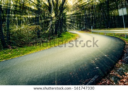 Road in the forest with sunlights effects - stock photo