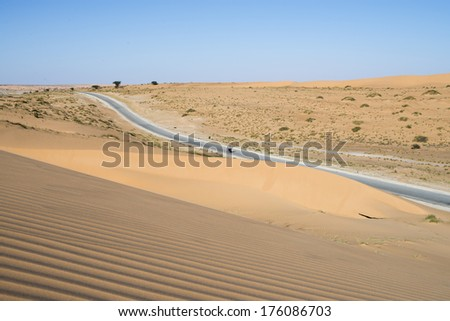 road in the sahara desert