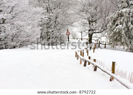 Road in the snowy forest with warning sign - stock photo