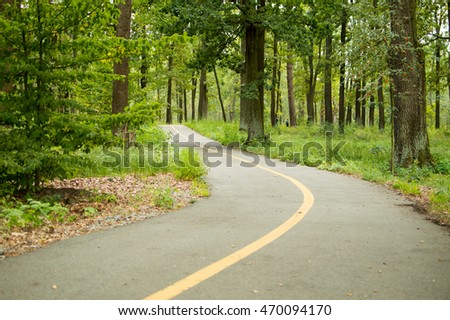 Road in the summer park for bicycle with the yellow line