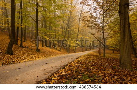 Road in the woods behind a foggy autumn haze - stock photo