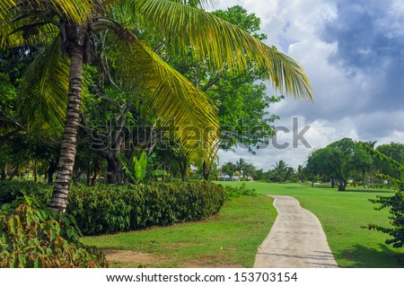 Road in Tropical jungle mountain in Dominican Republic, Seychelles, Caribbean, Mauritius, Philippines, Bahamas. Panoramic views of jungle mountains in Costa Rica. - stock photo