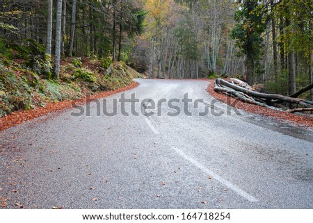 Road in Vercors in autumn, Grenoble, France